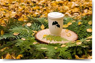 friedwald-bio-urne-beisetzung