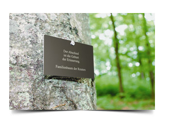 friedwald-winsen-elbmarsch